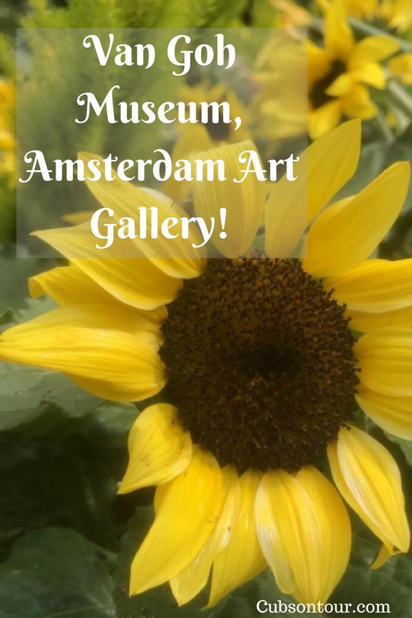 Van Goh Museum, Amsterdam Art Gallery!